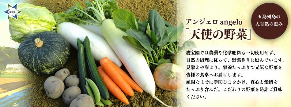天使の野菜