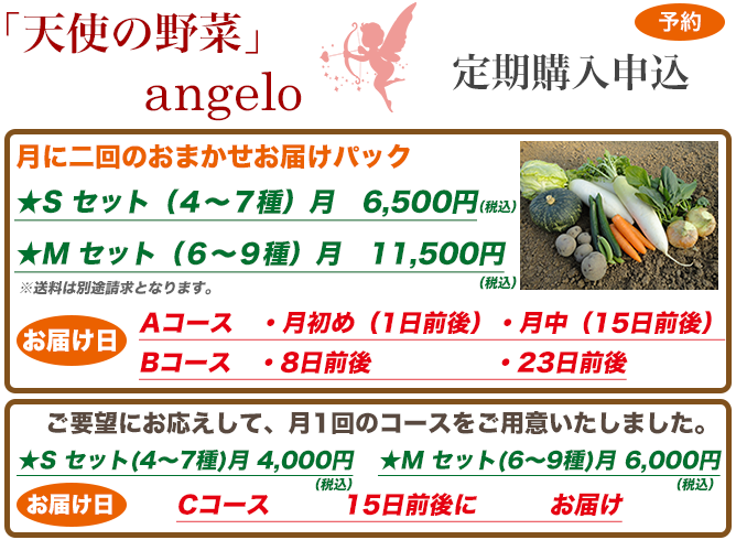 angelo_mousikomi2